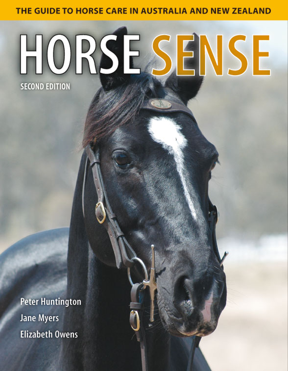 The cover image of Horse Sense, featuring the head and top half of the bod