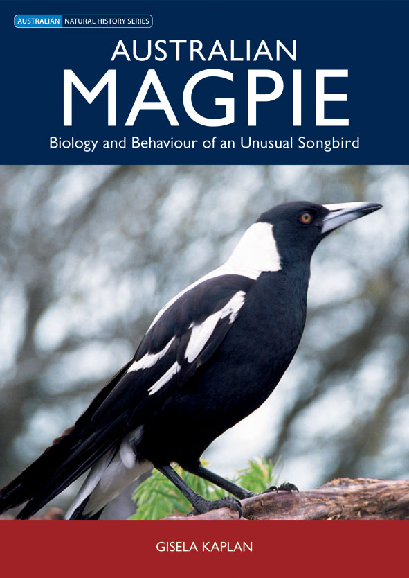 Cover image featuring a side shot of a magpie standing on a branch with ou