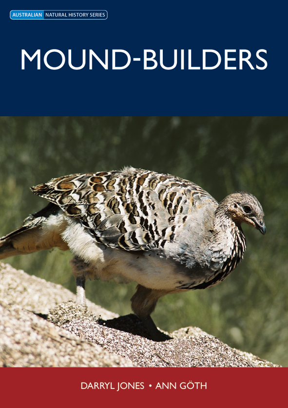 The cover image of Mound-builders, featuring a fat bodied brown bird perch