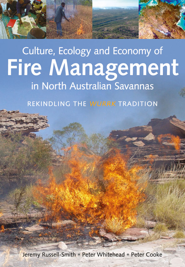 Cover image featuring a fire burning in scrub land bushed with rocky out c