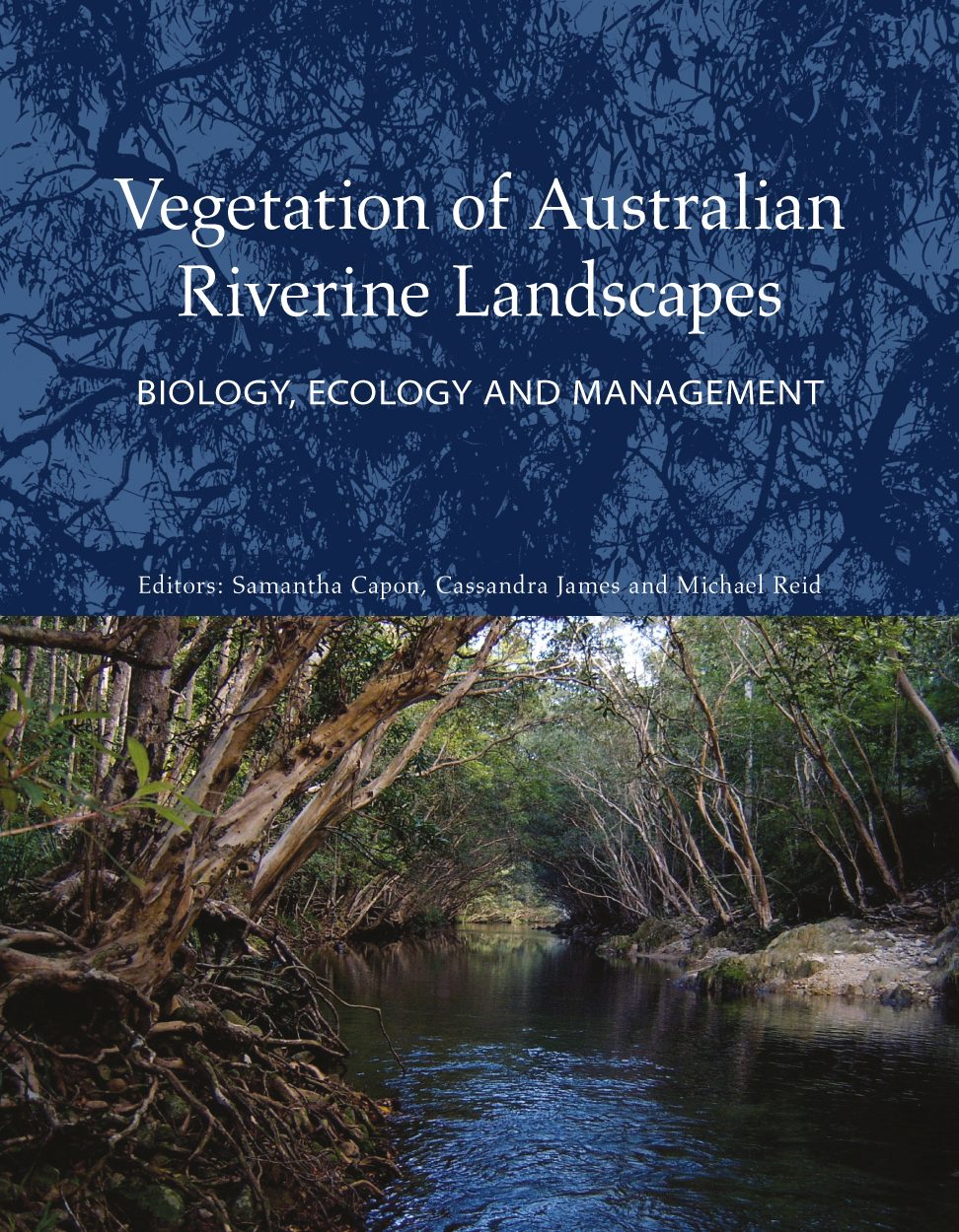 Cover image featuring Kanuka Box trees overarching Behana Creek in the Wet