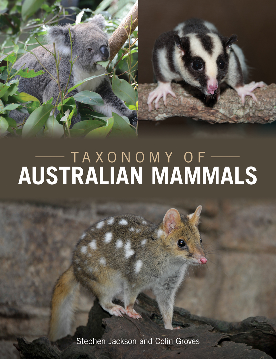 Cover image of Taxonomy of Australian Mammals, featuring photos of a Koala
