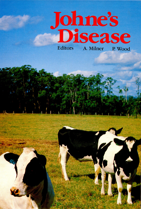 The cover image featuring three black and white cows in the immediate fore