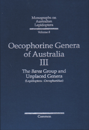 The cover image of Oecophorine Genera of Australia III, featuring a plain