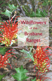 The cover image of Wildflowers of the Brisbane Ranges, featuring red and y