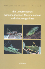 The cover image featuring four square images of green insects, set into a
