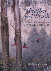 Cover image of Feather and Brush, featuring a painting of three rosellas f