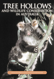 The cover image featuring a grey possum clutching a thin branch with leave