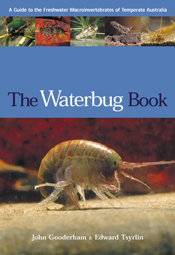 The cover image of The Waterbug Book, featuring a waterbug on a brown surf