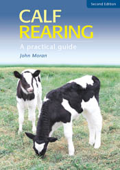 Cover image featuring two black and white calves standing in short green g