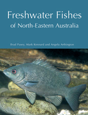 The cover image of Freshwater Fishes of North-Eastern Australia, featuring