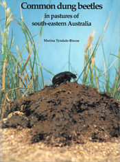 The cover image of Common Dung Beetles in Pastures of South-eastern Austra