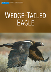 The cover image of Wedge-tailed Eagle, featuring a large wedge tailed eagl