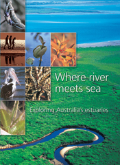 The cover image of Where River Meets Sea, featuring an aerial view of a ri