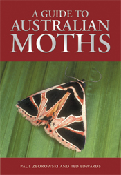The cover image of A Guide to Australian Moths, featuring a brown and blac
