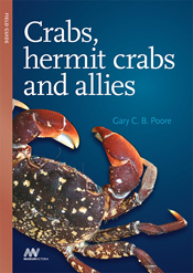 cover of Crabs, Hermit Crabs and Allies