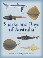 The cover image featuring images of various sharks and rays against a plai