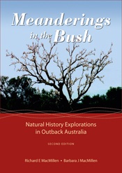 Cover image featuring a nearly silhouetted view of a tree covered in white