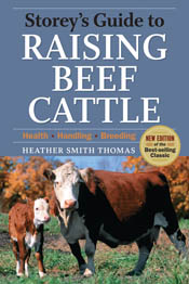 cover of Storey's Guide to Raising Beef Cattle