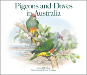 Cover image of Pigeons and Doves in Australia, featuring an illustration o