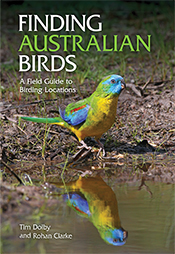 Cover image featuring a brightly coloured bird with its image reflected in
