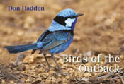 cover of Birds of the Outback
