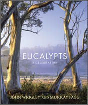 cover of Eucalypts