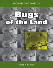 The cover image of Microscopic Worlds Volume 2: Bugs of the Land, features