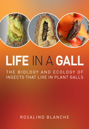 The cover image of Life in a Gall, featuring three images of insects again