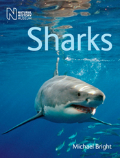cover of Sharks
