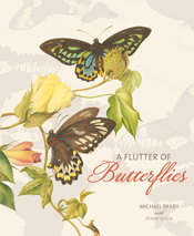 cover of A Flutter of Butterflies