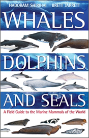 cover of Whales, Dolphins and Seals