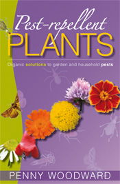 Cover is a curved row of flower heads against a purple background with bug