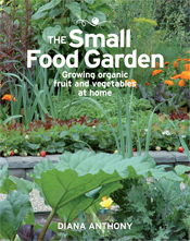 The cover image of Small Food Garden, featuring a garden with bright green