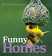 cover of Funny Homes
