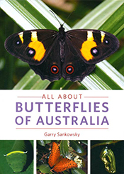 cover of All About Butterflies of Australia