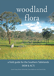 A lush, native bush scene with a variety of flora. Light grey title and su