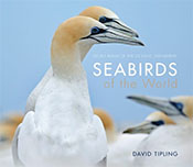 cover of Seabirds of the World